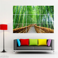 Stone Path in Bamboo Forest Landscape Poster Large Print Giant Art Deco A6
