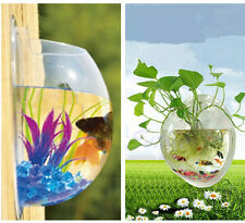 2016 Wall Mount Hanging Fish Tank Aquarium Plant Pot Bowl Bubble Decoration Cool