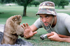 24x36 POSTER OF CADDYSHACK BILL MURRAY CLASSIC WITH HOSE LOOKING AT GOPHER HOLE