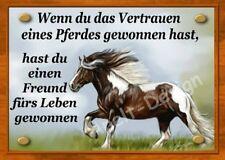 Tinker    / Pferd  /  Türschild / Weideschild / Boxenschild