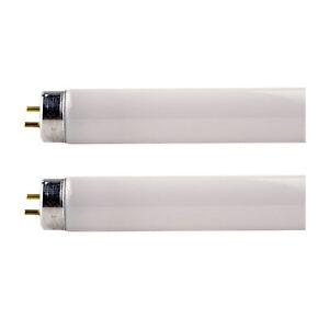 "X 2 Osram T8 36w 1.2m Tube Fluorescent €"" 2Pin G13 Casquette ( Extra Blanc Chaud"