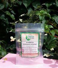 Echinacea Purpurea - 100x Pure Herbal Capsules or 100ml Organic Tincture