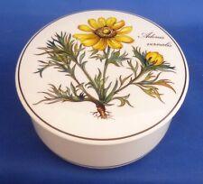 """Un Villeroy & Boch """"Botanica 'con Tapa de caja de la baratija-Adonis vernalis"""