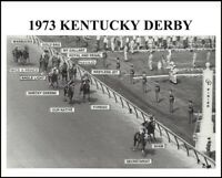 SECRETARIAT - WIDE ANGLE KENTUCKY DERBY HORSE RACING PHOTO IDENTIFIES HORSES!