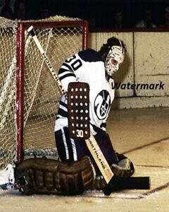 WHA 1970's Gerry Cheevers Cleveland Crusaders Color Pic 8 X 10 Photo Picture