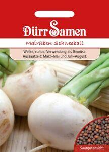 Mairüben Samen Schneeball Rübensamen Dürr Gemüse Butterrüben Weiße Rüben Rübe