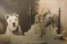 Antique postcard girl prays Pit bull American Staffordshire bull terrier dog *