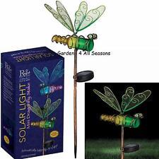 GREEN DRAGONFLY Mini BOTTLE Solar Light Garden Stake Creekwood Regal Art GiftBox