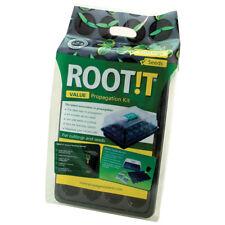 ROOT! T-valeur naturelle d'enracinement éponge Propagation Kit