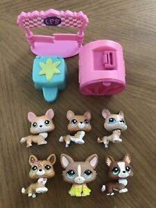 Littlest Pet Shop LPS Authentic Corgi Dogs #183 #639 #871 #1851 #1864 #2150