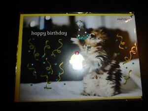 Papyrus Kitty Happy Birthday Card with cup cake - super cute