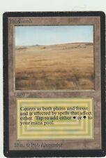 Beta MTG  Savannah  Magic Rare