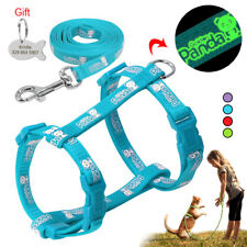 Reflective Nylon Cat Walking Harness&Lead Set for Kitten Puppy with Engraved Tag