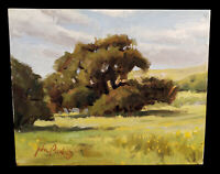 CALIFORNIA ART LANDSCAPE OIL PAINTING DIABLO OAK TREE PLEIN AIR ARTIST JOHN POON