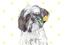 Single Large Luxury Shih Tzu Dog Greeting Card Gift/Present Birthday