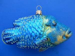 NAPOLEON FISH EUROPEAN BLOWN GLASS CHRISTMAS TREE ORNAMENT OCEAN LIFE
