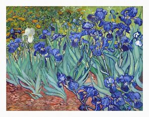 VAN GOGH Irises UNSTRECHED UNFRAMED CANVAS