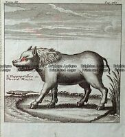 Antique Print 232-506 Mythical animal c.1780 Natural History