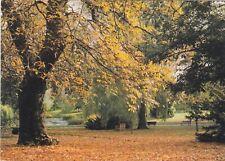 Royal Botanic Gardens Edinburgh In Autumn Scotland Postcard unused VGC