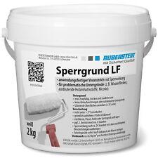 Versiegelung Sanierung Buntsteinputz 5 Kg StraßEnpreis Ruberstein® Buntsteinputzpflegelasur Putz