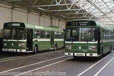 Southdown LN 167 Bus Photo
