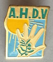 AHDV Association For Homeless & Disabled Veterans Pin Badge Rare Vintage (F5)