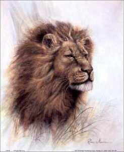Lion King of  the Jungle Lion Paper Tole 3D Decoupage Craft Kit size 8x10 8-8028
