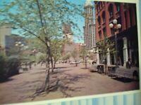 BEAUTIFUL PHOTO POST CARD OCCIDENTAL AVENUE SEATTLE WASHINGTON