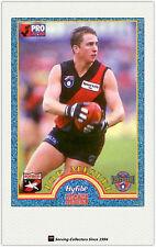 1996 Tip Top Hyfibe AFL Heroes Card #22 Joe Misiti (Essendon)