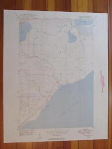 Deer Lake Michigan 1949 Original Vintage USGS Topo Map