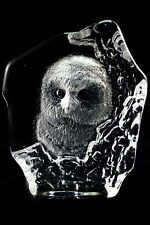 MATS JONASSON COLLECTIBLE ETCHED CRYSTAL OWL SCULPTURE FIGURINE STATUE