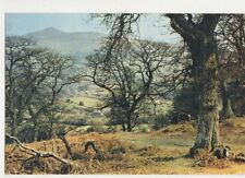Brecon Beacons Llanbedr Village & Sugar Loaf Postcard 435a