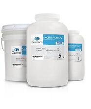 Garreco Self Cure Axcent Repair Denture Base Acrylic Shade 99 (1LB)