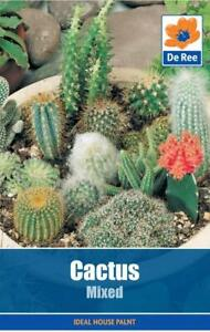 PACKET of CACTUS Mixed 15 Garden SEEDS
