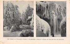 Niagara Falls NY~Ice Trees In Prospect Park~Frozen Cave Of The Winds~1905 PC