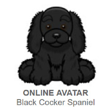 Webkinz Black Cocker Spaniel *Code Only*