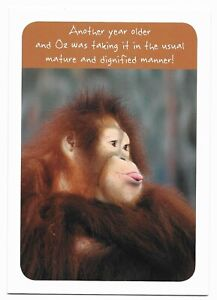 Happy Birthday Funny Primate Greetings Card For Him/Her/Friend by Cards For You
