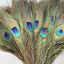 10pcs Natural Peacock Tail Feather Wedding Diy Decor Random Color Art Home Party