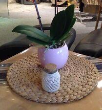 Deko ,Glas  umhäkelt, Blumenvase, ect. Sehr gute Qualitäts Handarbeit