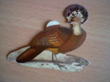 HOCCO ROUX 70´S SPANISH PROMOTIONAL CARD BIRDS PANRICO UNSTICKED