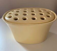 Southern Living At Home Oval Arrange It Easy 2 pcs Vase Frog ~Planter