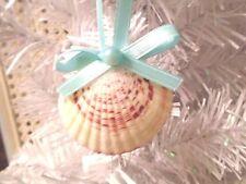 Seashell Ornament Pectin Shell Christmas Tree Coastal Decor Aqua Pearl Ribbon