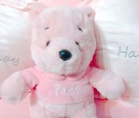 Plüschtiere Winnie the Pooh Sakura Anime Kinder Puppen Stofftier Geschenk 23cm