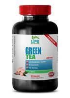 Boosts Eyesight - Green Tea Extract 300mg - Organic Matcha Green Tea Powder 1B