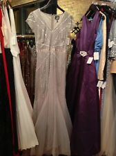 Adrianna Papell Silver Cap Sleeve Gown Mother Of Bride 6 Small