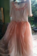 Ex hire  womens renaissance lady fancy dress