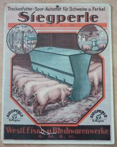 Werbeschild Siegperle                                                 (Art.3574)
