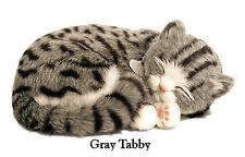 GRAY TABBY - Il cucciolo che respira - PERFECT PETZZZ