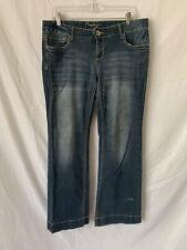 Amethyst Size 13 Stonewashed Style Flared Jeans