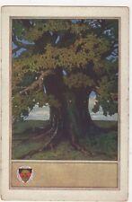 Deutscher Schulverein Germany Art Vintage Postcard 223a
